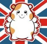 Hamster joueur : des bons plans pour acheter vos jeux vidéo