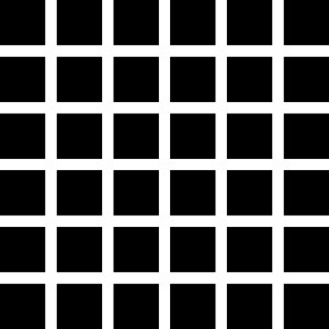 Illusion Grid